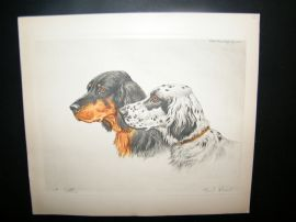 Paul Wood C1935 Signed Colour Etching. Setters. Dog Print